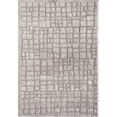 Pasha Cloud Gray Area Rug Rug Size: 710 x 910