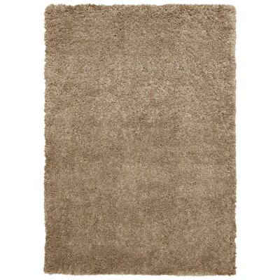 Seward Shag Hand Tufted Brown Area Rug