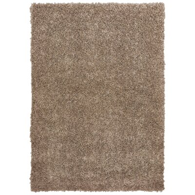 Nutley Shag Rectangle Hand Tufted Brown Area Rug
