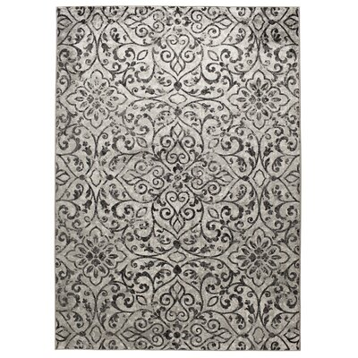 Carron Gray/Charcoal Area Rug