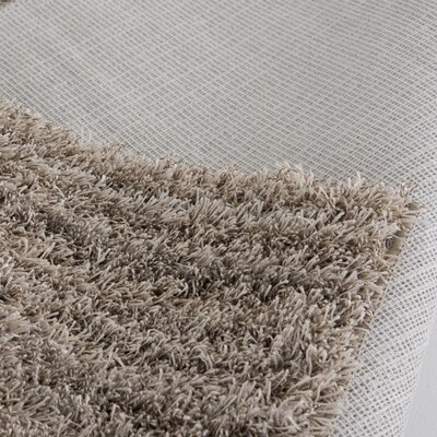 Leboeuf Shag Area Rug Rug Size: Rectangle 76x96