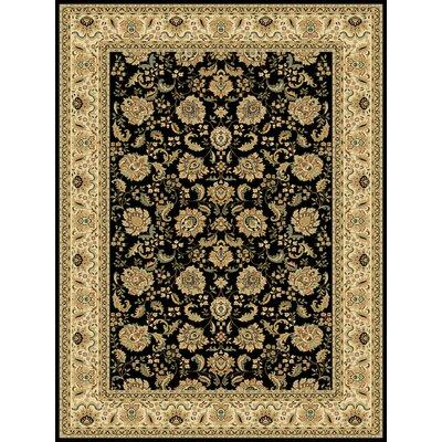Persian Radiance Regency Black/Ivory Rug Rug Size: 710 x 1010