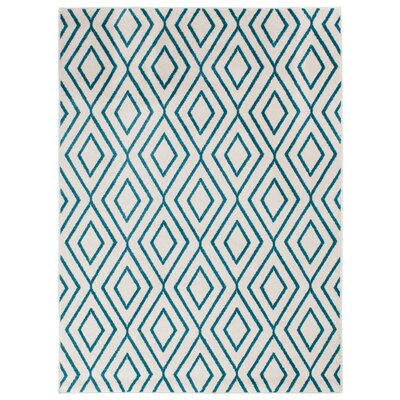 Braysham Snow/Turquoise Indoor/Outdoor Area Rug