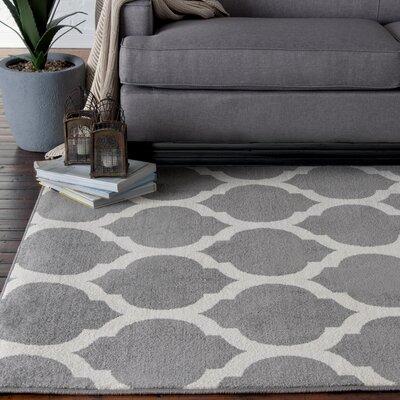 Clarkson Gray/White Indoor/Outdoor Area Rug