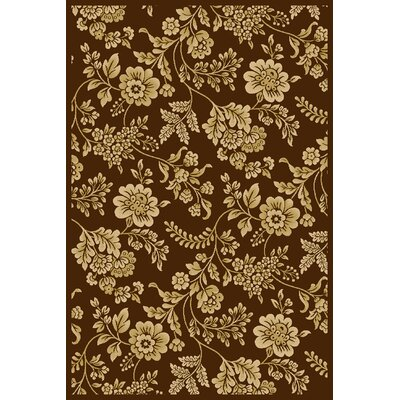 Interlude Juniper Brown Rug Rug Size: 910 x 1210