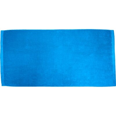 Apolonio Velour Beach Towel Color: Aqua