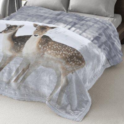 Lauren Taylor Polyester Blanket
