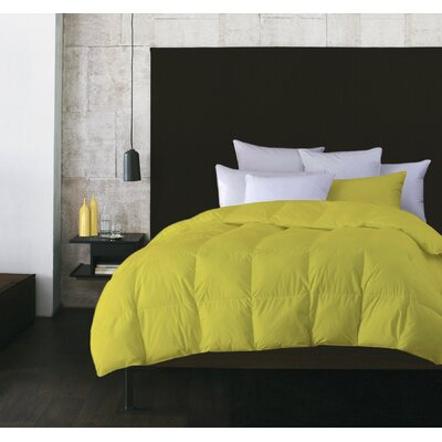 Boyce Microfiber Feather Duvet Size: Twin, Color: Yellow