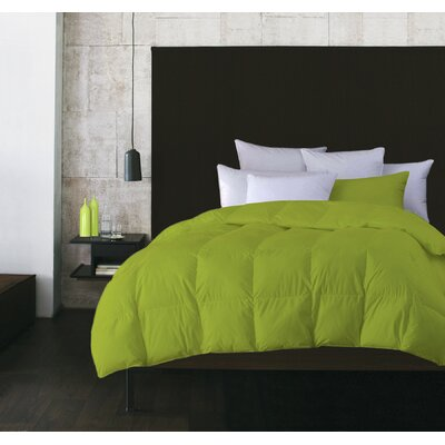 Boyce Microfiber Feather Duvet Insert Size: Twin, Color: Light Green