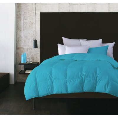 Boyce Microfiber Feather Duvet Size: Twin, Color: Aqua