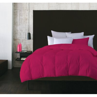 Boyce Microfiber Feather Duvet Insert Size: Full/Queen, Color: Fuchsia