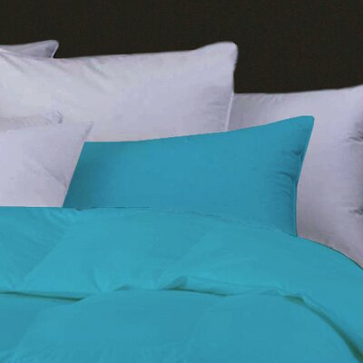 Boyce Feather Standard Pillow Color: Aqua