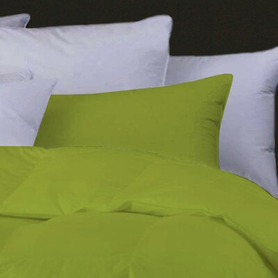 Boyce Feather Standard Pillow Color: Light Green