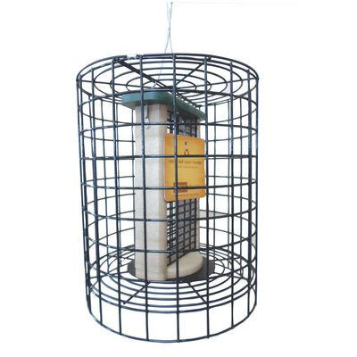 Double Suet Bird Feeder