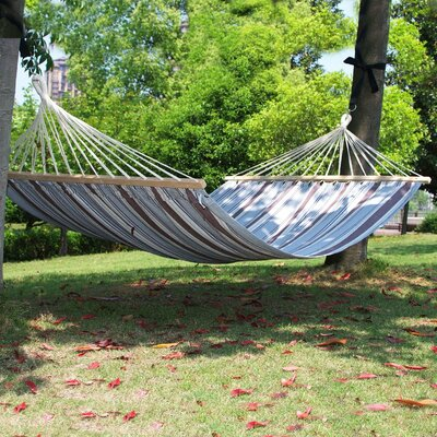 Naval Double Tree Cotton Hammock Color: Blue