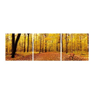 Bench in the Park 3 Piece Photographic Print Set 7335ABC50X50
