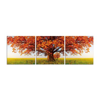 'Autumn Trees at Sunny Day' Photographic Print Multi-Piece Image on Canvas Size: 20