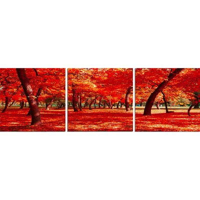 'Autumn Trees Forest' Photographic Print Multi-Piece Image on Wrapped Canvas Size: 20