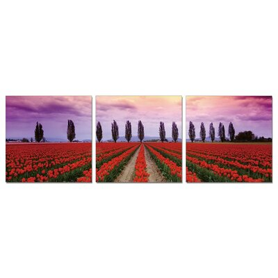 'Tulips Field' Photographic Print Multi-Piece Image on Wrapped Canvas Size: 20