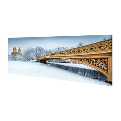 'Snowfall Central Park' Framed Photographic Print on Wrapped Canvas