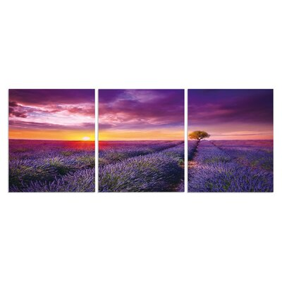 'Lavender at Sunset' Photographic Print Multi-Piece Image on Canvas