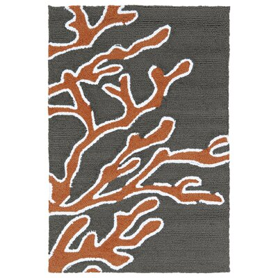 Claysburg Tangerine Hand Tufted Indoor/Outdoor Rug Rug Size: Rectangle 2 x 3