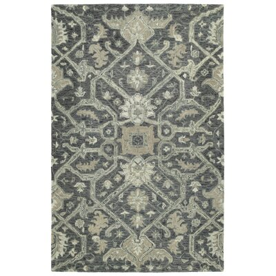 Toshiro Hand Tufted Wool Graphite Area Rug Rug Size: Rectangle 4 x 6
