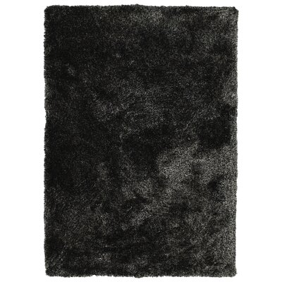 Bieber Shag Black Area Rug Rug Size: Rectangle 5 x 7
