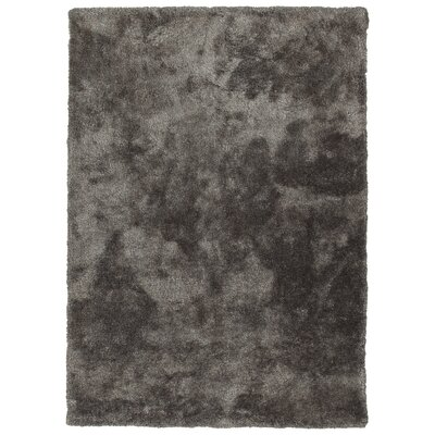 Bieber Taupe Area Rug Rug Size: Rectangle 9 x 12