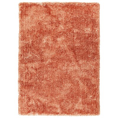 Bieber Tangerine Area Rug Rug Size: Rectangle 3 x 5