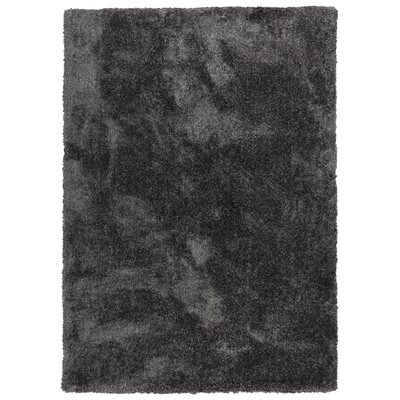Bieber Handmade Shag Charcoal Area Rug Rug Size: Rectangle 8 x 10