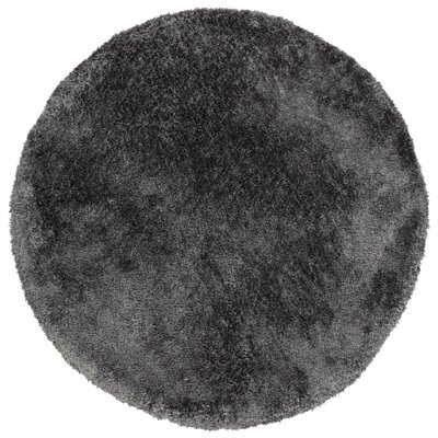 Bieber Charcoal Area Rug Rug Size: Round 4