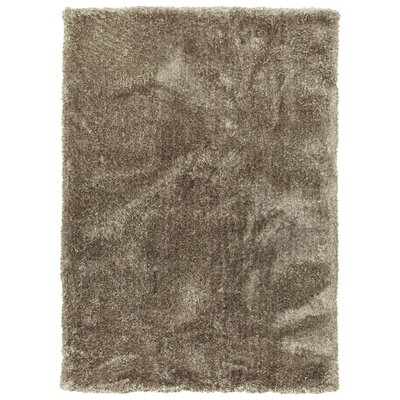 Bieber Chino Area Rug Rug Size: Rectangle 8 x 10