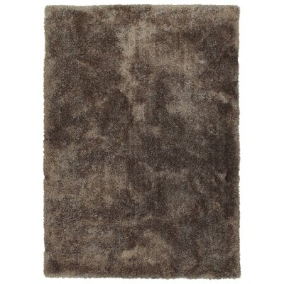 Bieber Brown Area Rug Rug Size: Rectangle 9 x 12