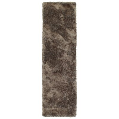 Bieber Brown Area Rug Rug Size: Runner 23 x 8
