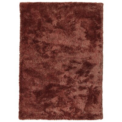 Bieber Cinnamon Area Rug Rug Size: Rectangle 9 x 12