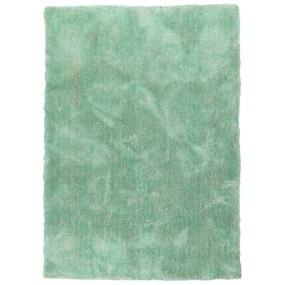 Bieber Turquoise Area Rug Rug Size: Rectangle 8 x 10