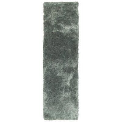 Bieber Mint Area Rug Rug Size: Runner 23 x 8