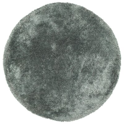Bieber Mint Area Rug Rug Size: Round 8