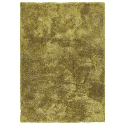 Bieber Lime Green Area Rug Rug Size: Rectangle 5 x 7