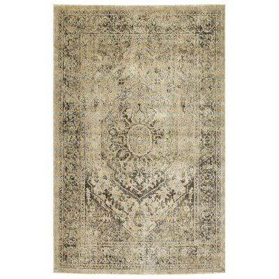Jada Gold Area Rug Rug Size: Rectangle 53 x 73
