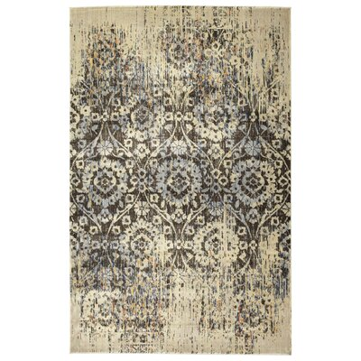 Makawee Chocolate Area Rug Rug Size: Rectangle 53 x 73