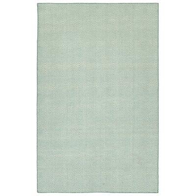 Buell Hand Woven Blue Indoor/Outdoor Area Rug Rug Size: Rectangle 5 x 76