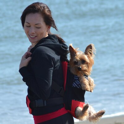 Sak Pet Carrier Size: Medium (13 H x 10 W), Color: Red