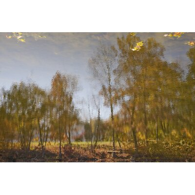 Limited Edition 'Reflection 11' by Michael Filonow Photographic Print 18819