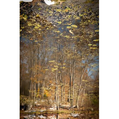Limited Edition 'Reflection 16' by Michael Filonow Photographic Print 19175