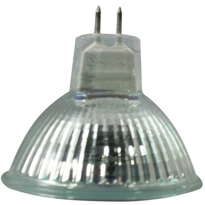 EXN 50W Halogen Light Bulb (Set of 3)