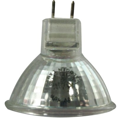 Halogen Light Bulb (Set of 2) Wattage: 50W