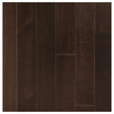 3-1/2 Solid Mango Hardwood Flooring in Negro