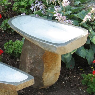 Large Granite Boulder Birdbath Size: Medium BB-BO-3